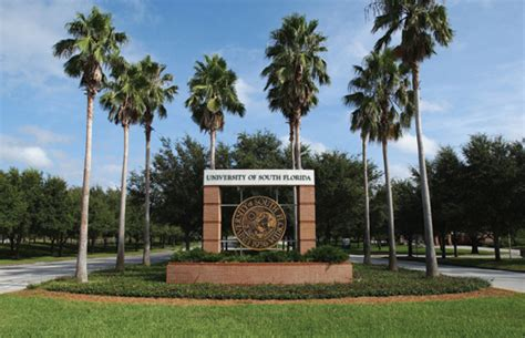 Univeristy Of South Florida St Petersburg Mba by Universit 233 De Floride Du Sud Us Academia