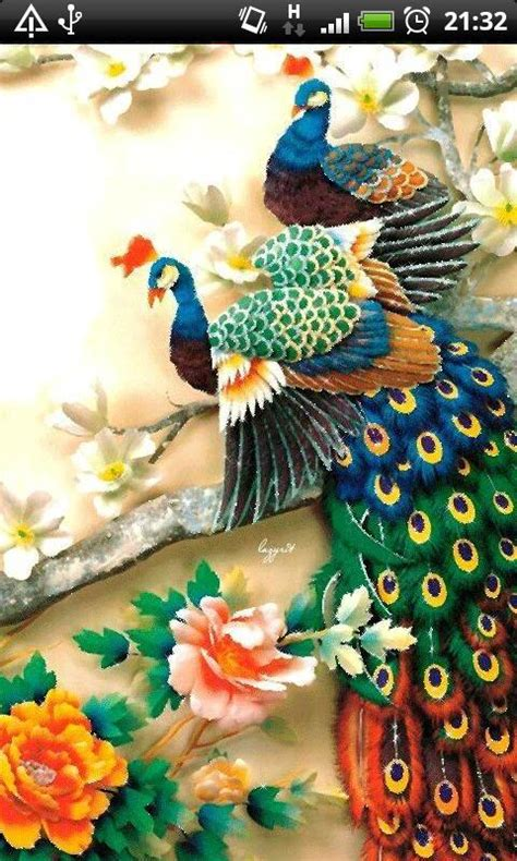 colorful live wallpaper colorful peacock livewallpaper android apps on play