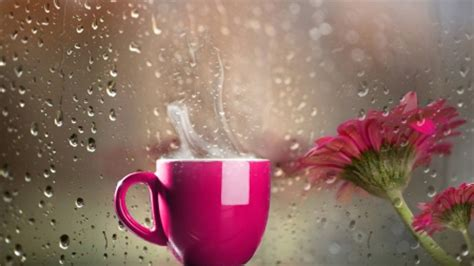 coffee wallpaper pink coffee with views of the rain other abstract