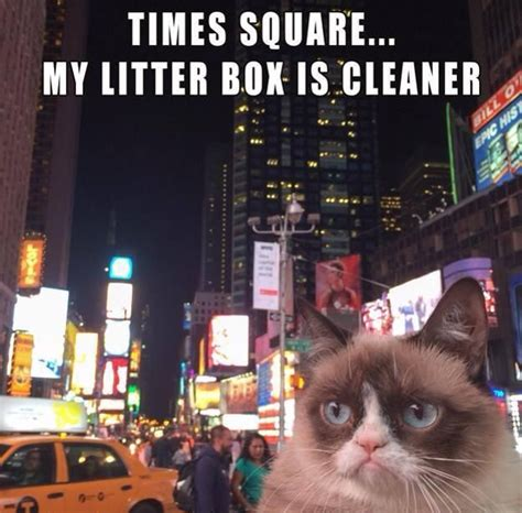 Meme Nyc - times square new years eve humor pinterest