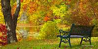 Autumn Bench Connecticut Fall Foliage Scene Lake Park High