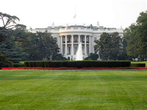 Kaos White House primaries political tidbits
