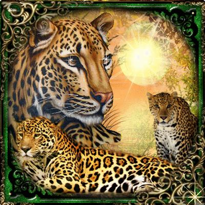 leopard family picture  blingeecom