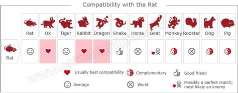 year of the rat zodiac luck romance personality