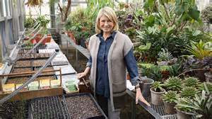 Ask Martha Vegetable Garden Basics Video Martha Stewart Martha Stewart Vegetable Garden