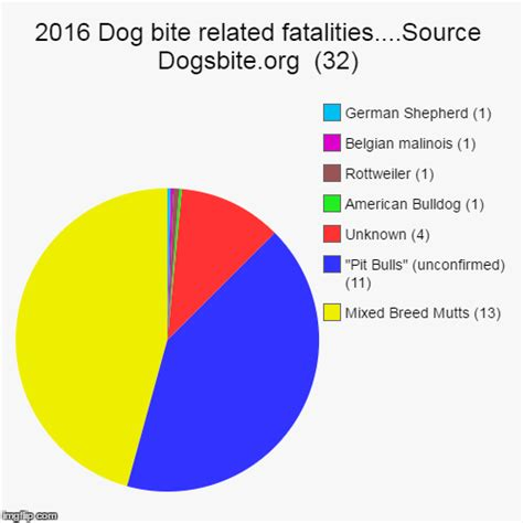 attacks by breed 2016 pit bull haters exposed