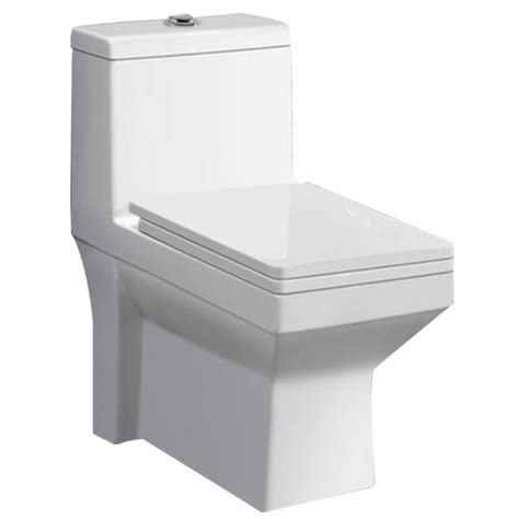 Wc Wash Closet by Buy Belmonte One Water Closet Ripone S Trap With Lcd