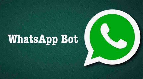 Search For On Whatsapp How To Use Whatsapp As A Search Engine Activate Whatsapp Bot