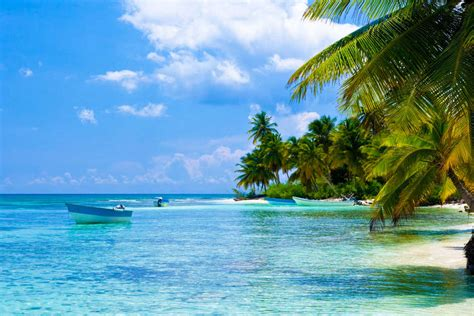 cheap flights to punta cana puj budgetair 174 south africa