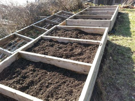 Raised Bed Vegetable Garden Soil Preparation Preparing The Raised Beds For Vegetable Garden Garden