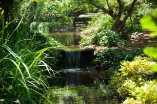 descanso gardens iamnotastalker