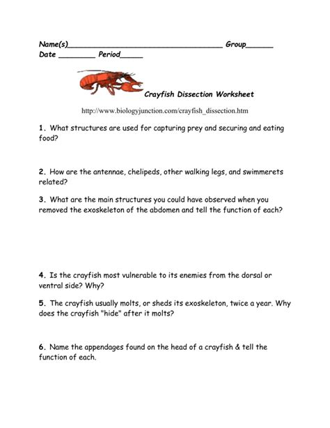 Crayfish Dissection Worksheet by Crayfish Dissection Worksheet Answers Resultinfos