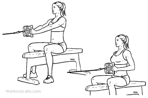 Bench Press Wide Or Narrow Grip Seated Low Cable Row Illustrated Exercise Guide