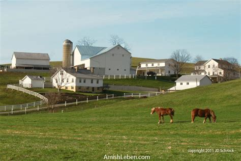 an amish winter home sweet home a visitor when winter comes books amish photos amish leben