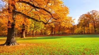 park autumn scenery hd wallpaper 1720737