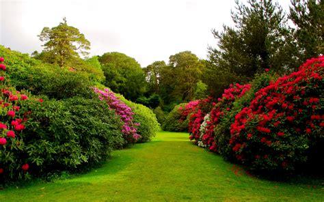8 Cool Gardening Blogs by Flower Garden Backgrounds 48