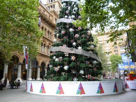 christmas tree in martin place picture of martin place