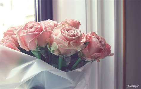 hoontoidly roses bouquet images