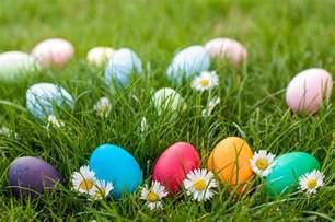 easter egg easter egg hunt ncqma