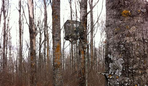 types of tree stands big tree stand blinds how to create tree stand