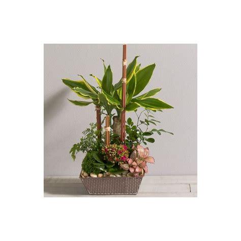 coupe de plantes mikado interflora wikifleurs