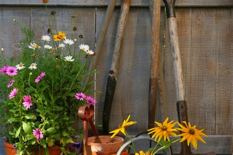 attrezzi giardiniere attrezzi e strumenti del perfetto giardiniere premio