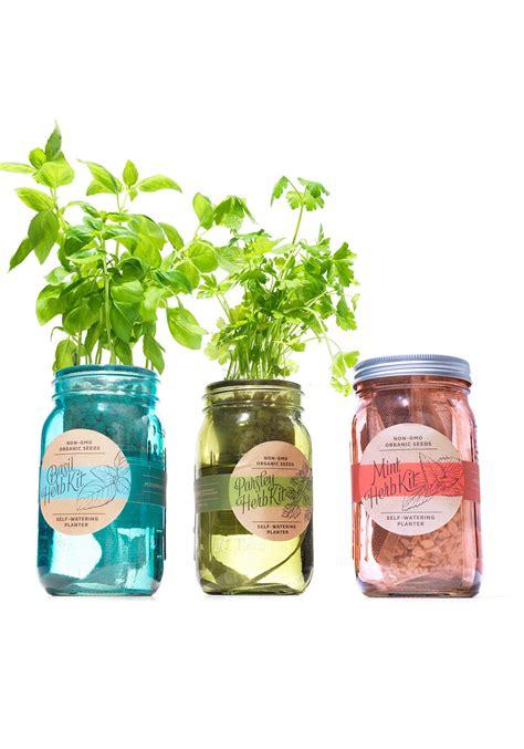 garden jar kitchen herb kit oprah s pick modernsprout oprahs favorite things 2015 modern sprout garden jar three