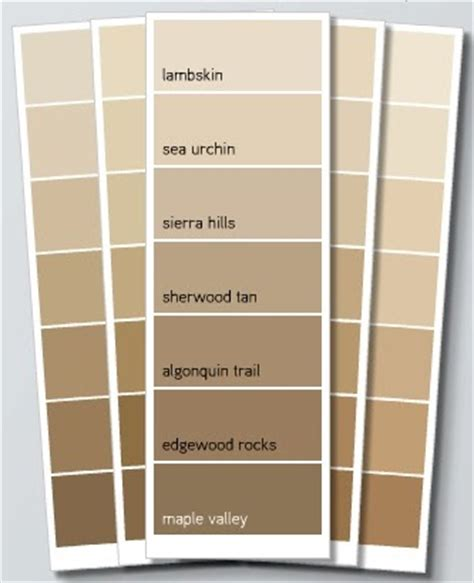 a color specialist in charlotte how to choose beige