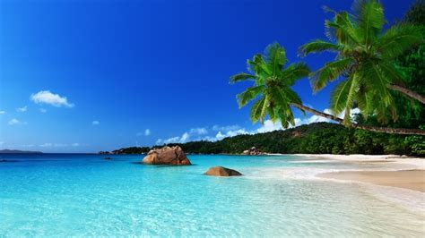 tropical island landscape pictures to pin on pinterest