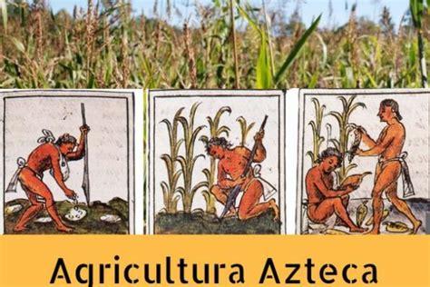 imagenes sobre aztecas cultivos aztecas cultura azteca