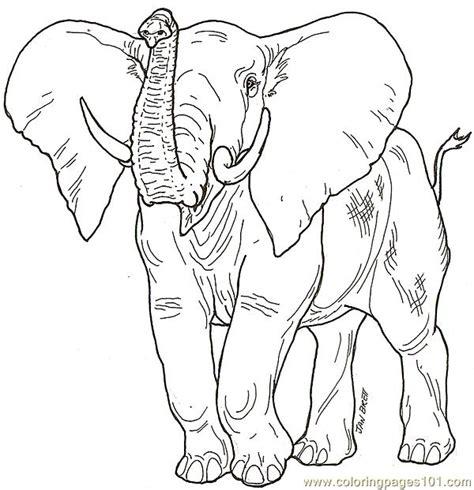 elephant trunk coloring page babaelephant2 coloring page free elephant coloring pages