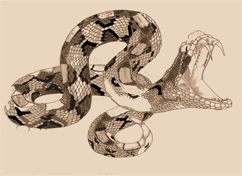 snake tattoo by agaricgreywolf on deviantart