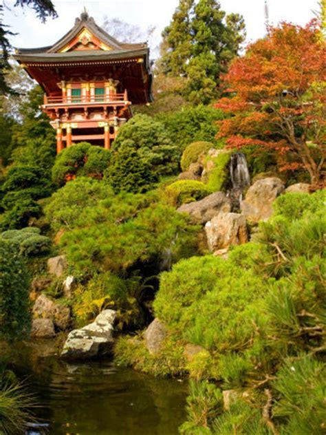 san francisco california japanese tea garden photo