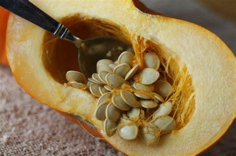 kuerbiskerne gesund staerken sie ihre gesundheit