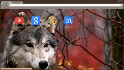 theme google chrome wolf teen wolf chrome theme themebeta