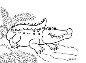 crocodile pictures to print free printable alligator coloring pages for
