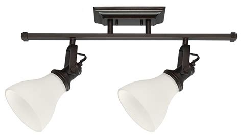 2 light track lighting kit transitional bathroom