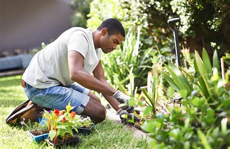 tips  gardening   budget dupage credit union