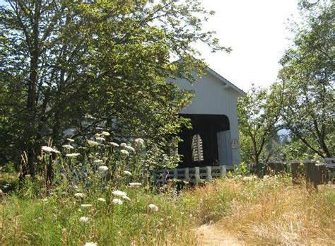 Things To Do In Cottage Grove Oregon by Mossby Creek Bridge Picture Of Cottage Grove Covered