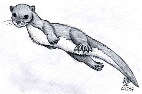 river otter by the snowlion on deviantart