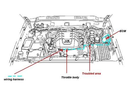 car diagrams isuzu rodeo 2002 wiring diagram schemes