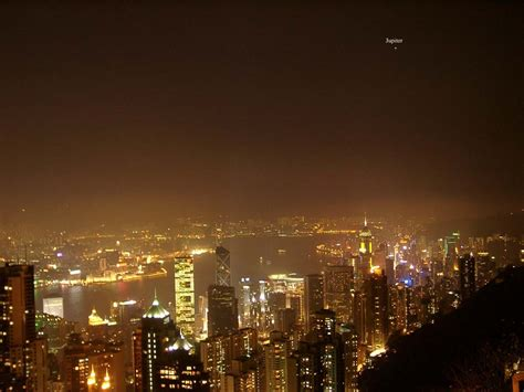 anthrophysis nocturnal light pollution can suppress