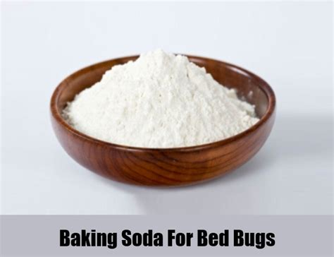 natural bed bug treatment natural and herbal remedies treatments home long hairstyles