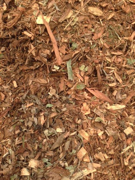 forest mulch warner garden centre
