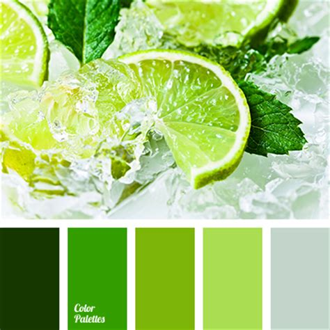 organic colours incorporate the green shades of grass green pine color palette ideas
