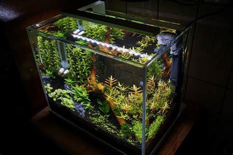 nano planted tank light azoo led flexi mini nano light spectrum lighting