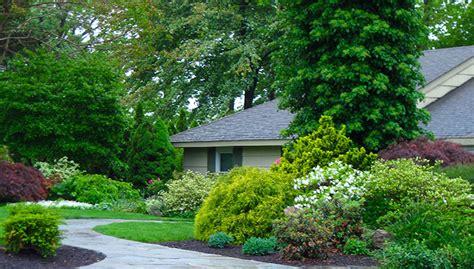shrub garden design ideas northeast gardening what shrubs can do for your garden