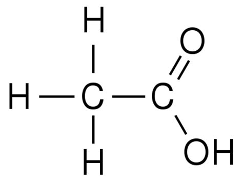 acid diagram biochemistry the building blocks of