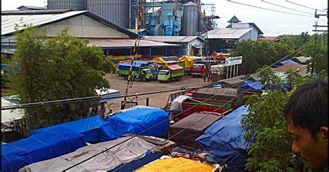 Harga Pakan Ternak Jagung harga jagung bns indonesia charoen pokphand menaikkan