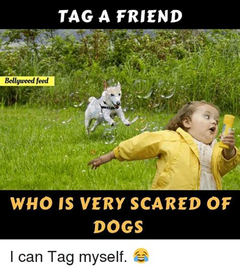 Tag A Friend Meme - tag a friend bollywood feed who is very scared of dogs i